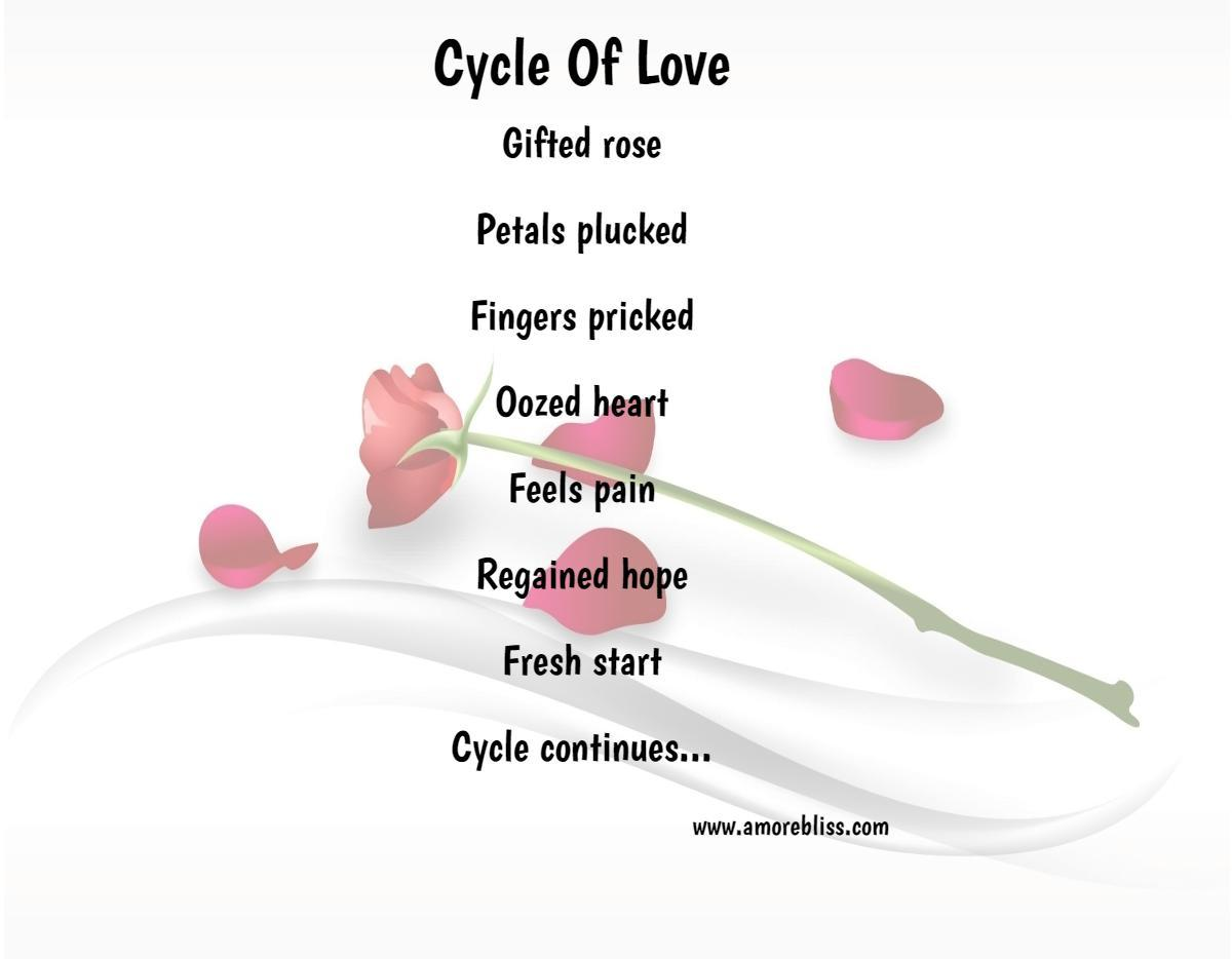 Cycle Of Love Amorebliss
